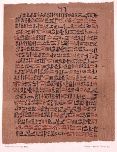 Papiro de Ebers datado de 1550 aC